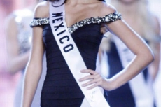 Miss Universe 2010 014