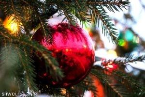 Как украсить елку на Новый год 2017 - советы фэн-шуй