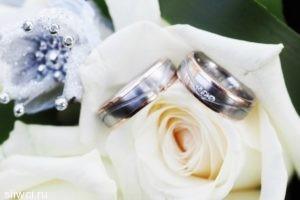 «Золотая судья» прокомментировала скандал с роскошной свадьбой дочери