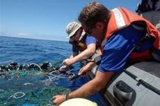 """Огромное """"мусорное пятно"""" обнаружено и в Атлантике"""