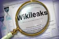 Wikileaks скрывается от американского давления в Швеции