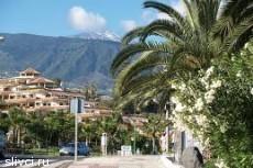 Туры по Испании в Пуэрто-де-ла-Крус