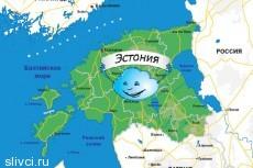 Шенгенская виза в Эстонию