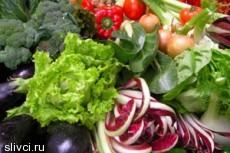 Шесть лучших продуктов для питания мозга