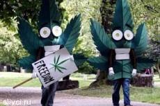 Тысячи немцев просят легализовать марихуану