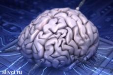 Мозг или сердце могут стать ключами к компьютеру