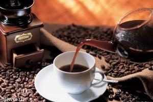 Кофеин будит не только человека, но и его память