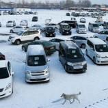 Какие автомашины покинут Россию из-за кризиса
