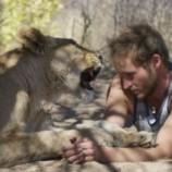 Как подружились человек и львица