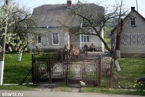 Польша и Украина могут обменяться правами на десятки тысяч домов