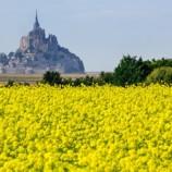 Во Франции выставили на продажу участки земли по 1 евро за квадратный метр